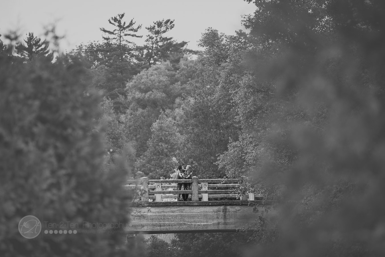 rockwood conservation area engagement photography by ten2ten photography