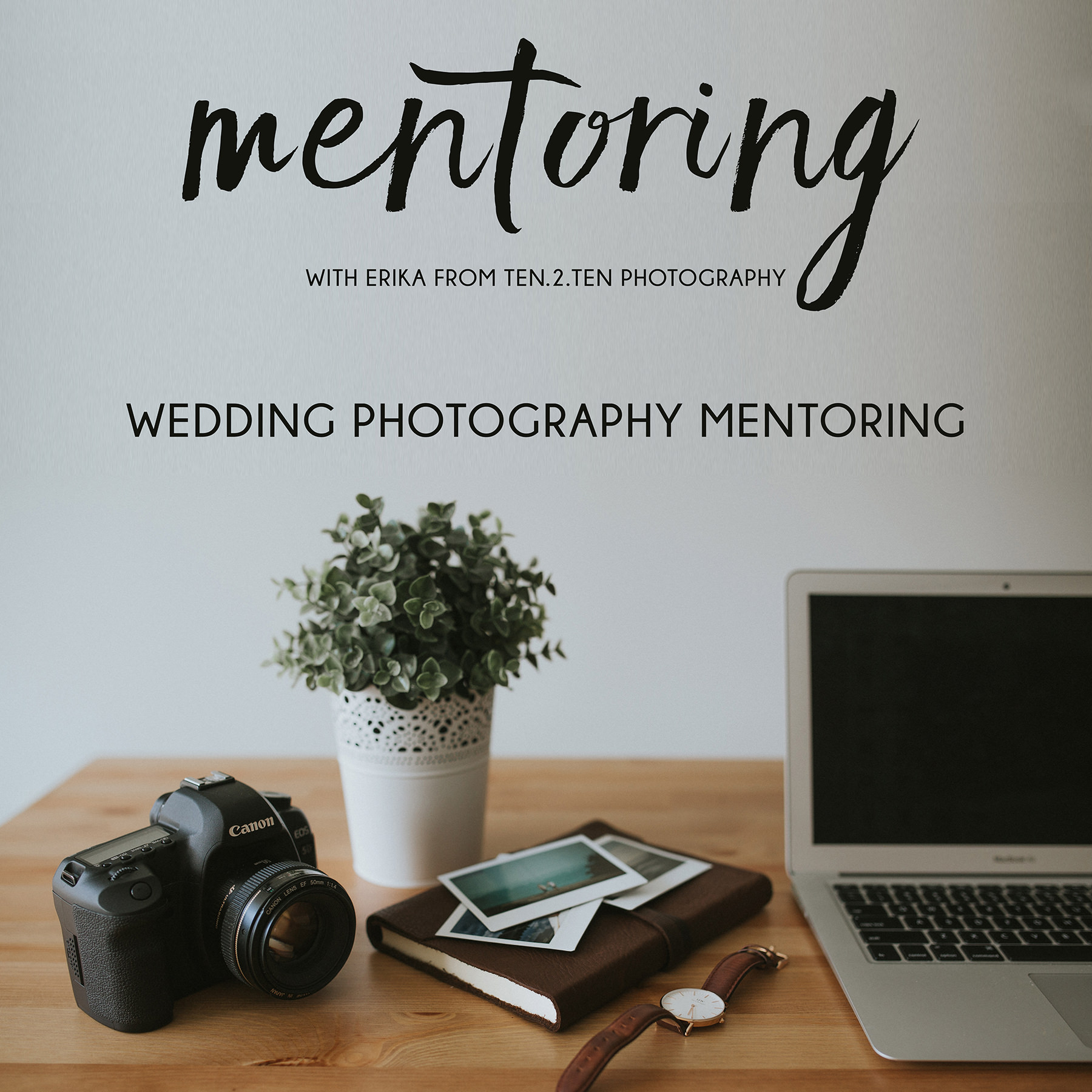 Free Photography Mentorship